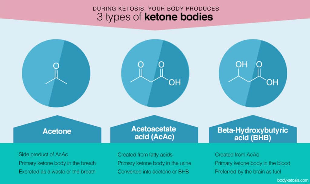 Three types of ketone bodies