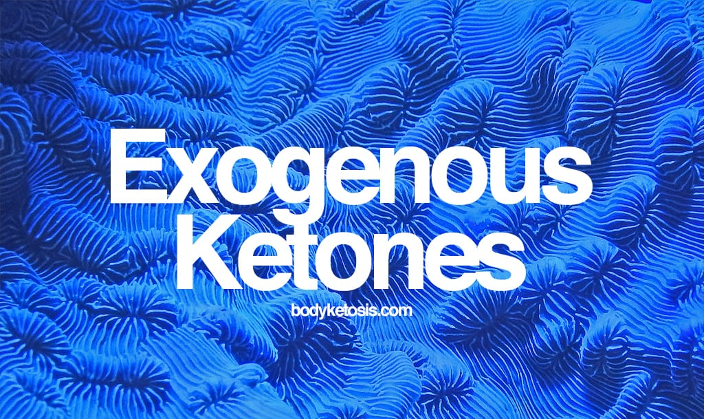 Detailed Beginners Guide To Exogenous Ketones (Boost Your Weight Loss In 2018)