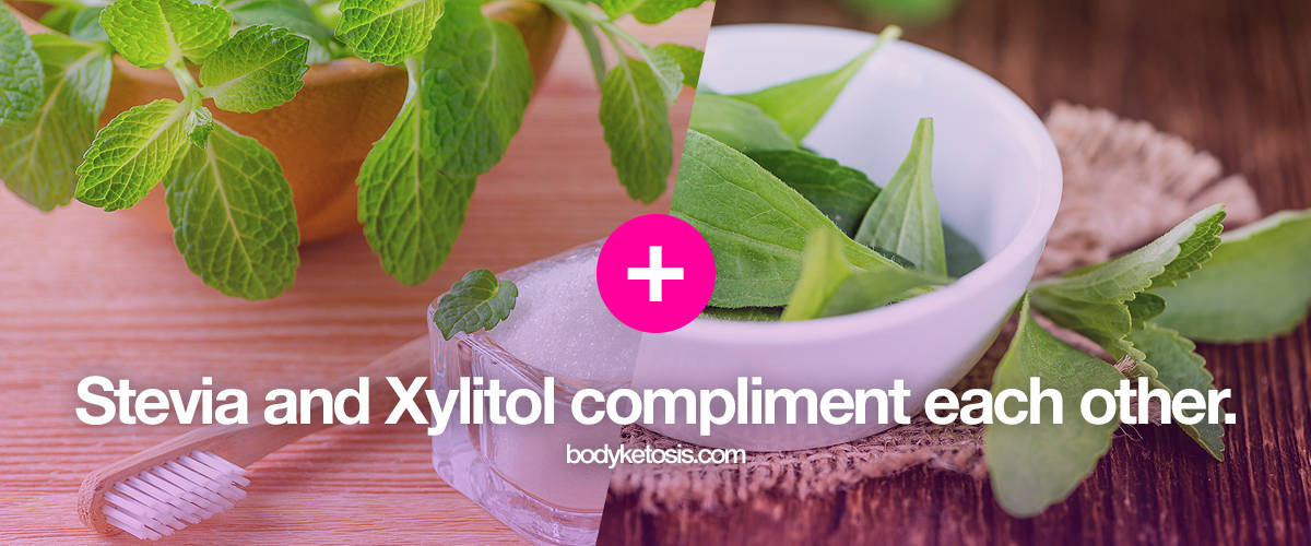xylitol and stevia compliment each other keto sweeteners