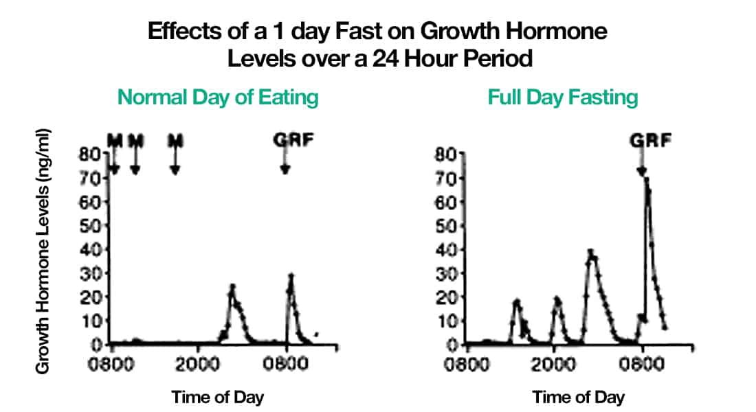 fasting hormone levles effect